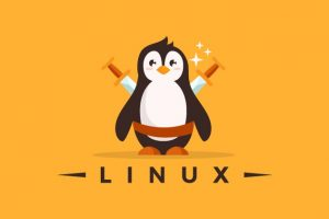 Linux Mastery: Master the Linux Command Line in 11.5 Hours Course Site Learn the Linux Command Line from Scratch and Improve your Career with the World's Most Fun Project-Based Linux Course!